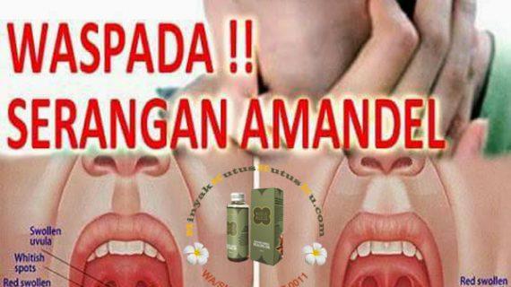 Minyak Kutus Kutus Untuk Keluhan Batuk, Flu, Radang Tenggorokan, Sinusitis, Ashma & Amandel